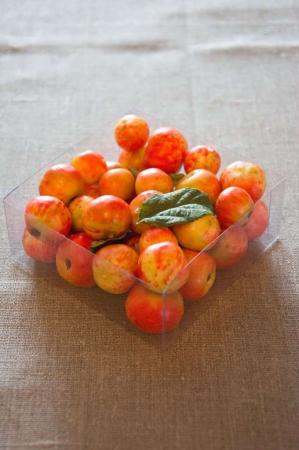 Kunstige orange bær til dekoration. Efterårsbær til deko. Dekobær til efterår. Orange bær i æske.