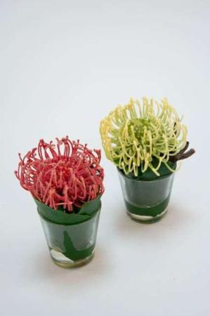 Kunstig plante i vase fra Sia - Kunstig orange plante i vase fra Sia -Kunstig hvid plante i vase fra Sia