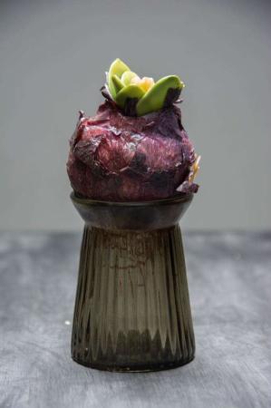 Små hyacintglas i farvet glas.