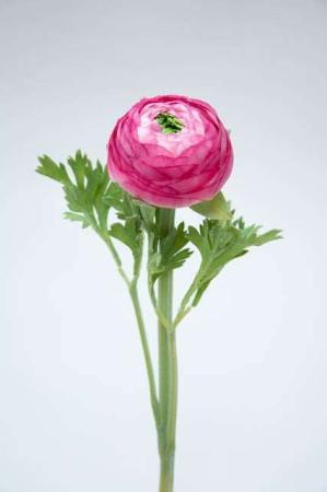 Kunstig lyserød ranunkel - Afskårne blomster - Blomster til buketter