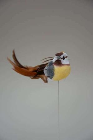 Fugl på pind