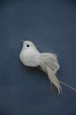 Hvid dekorations fugl