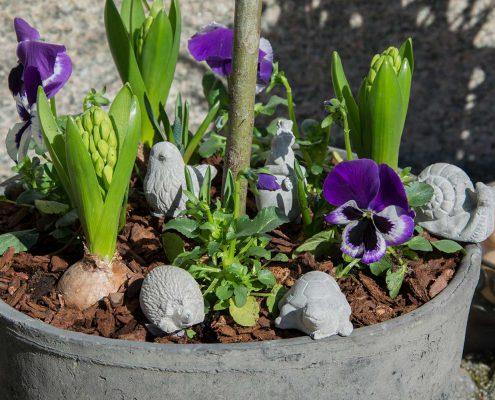 Forårs krukke