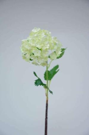 Kunstig hvid aurikel - Afskårne blomster - Blomster til buketter