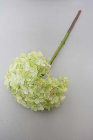 Hortensia i grøn, kunstig blomst, kunstig hortensia