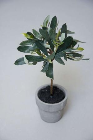 Kunstig plante i cement potte