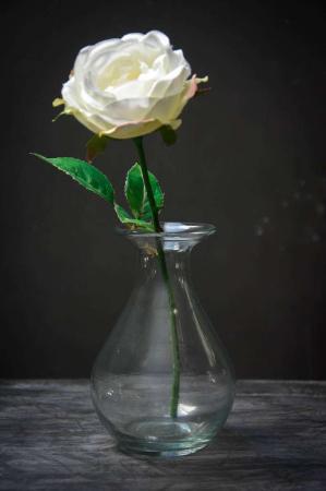 Klar glasvase med rose