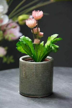 Lille grøn urtepotteskjuler