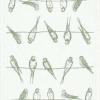 Økologisk blå bordløber med muslinger fra Ekelund - Sittning birds 04