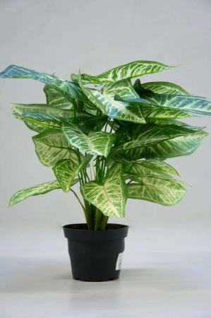 Kunstig plante i potte - dieffenbachia