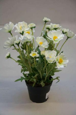 Kunstige blomster - hvid cosmos i potte