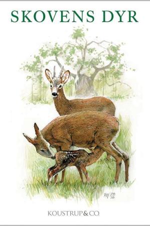 Kort med kuvert med motiver af skovens dyr