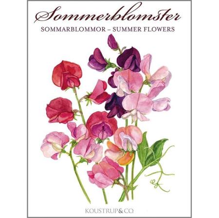 Kort og kuvert - Sommerblomster