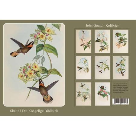 Kort og kuvert med motiver af kolibrier