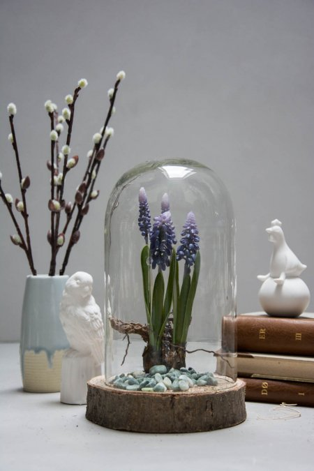 Påskedekoration 2018 - perlehyacinter i glasklokke