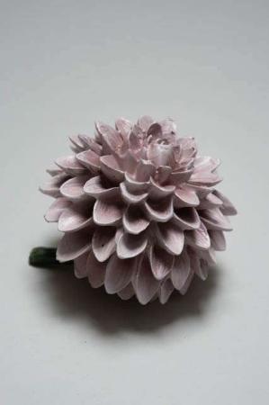 Dahlia blomst - lilla