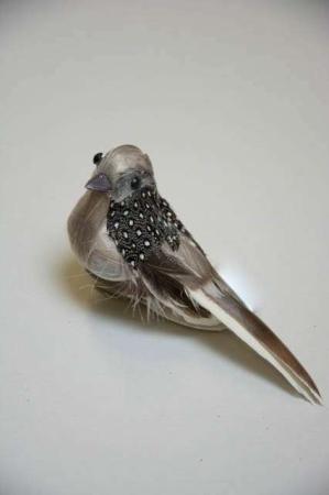 Fugl på klips til at sætte på gren - Natur fjer