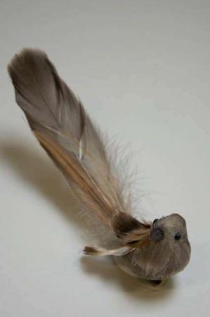Fugl på klips til at sætte på gren - Natur med lang hale