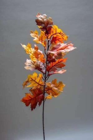 Gren med efterårsblade - eg