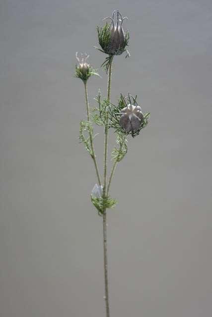 Kunstig blomst - nigella