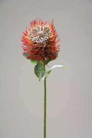 Kunstig blomst - protea