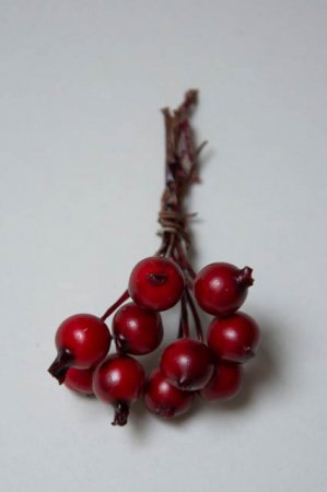 Små røde deko bær på ståltråd