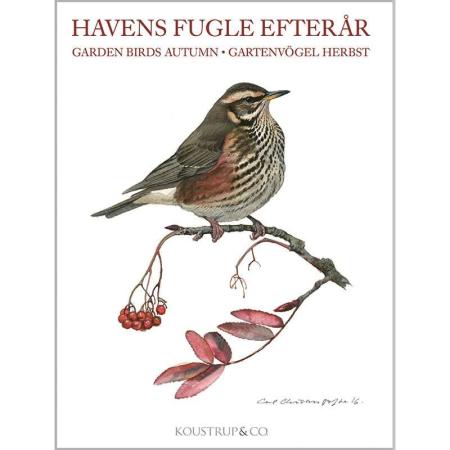 8 Kvalitetskort med motiv af efterårets fugle
