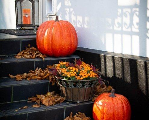 Udendørs efterårsdekorationer med græskar