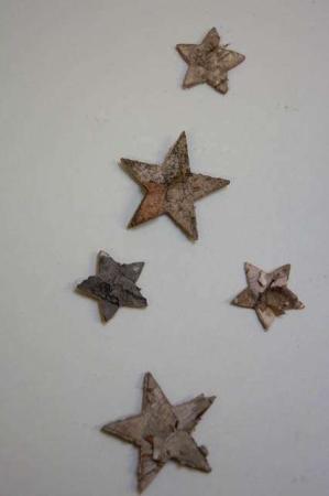 Stjerner af bark