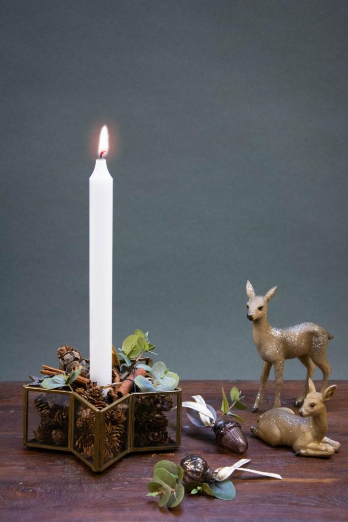Juledekoration 2018 - Stjernestage med kogler og kanelstænger