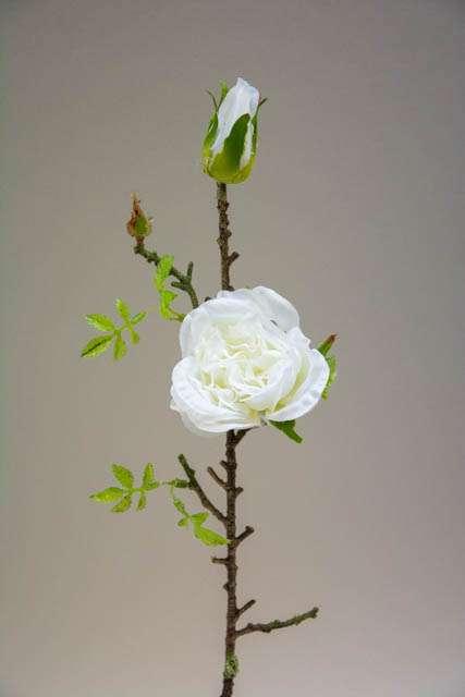 Kunstig rosengren hvid