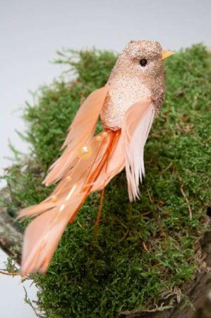 Ferskenfarvet fugl på pind. Pyntefugl på pind.