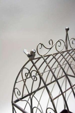 Deko fuglebur af metal. Plantehus med lille fugl. Fuglebur til haven.