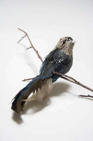 Fugl på clips - sort med glimmer. Sort dekofugl med clips. Dekofugl til æresport. Dekofugl til dekorationer.