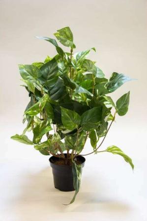 Kunstig guldranke i potte. Kunstig potteplante. Pollenfri blomster. Pollenfri planter. Kunstig grøn plante i potte. Potteplante af kunstigt materiale. Plastic blomst.