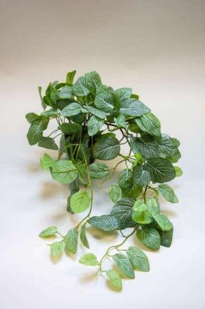Kunstig hængende guldranke i potte. Kunstig potteplante. Pollenfri blomster. Pollenfri planter. Kunstig grøn plante i potte. Potteplante af kunstigt materiale. Plastic blomst.