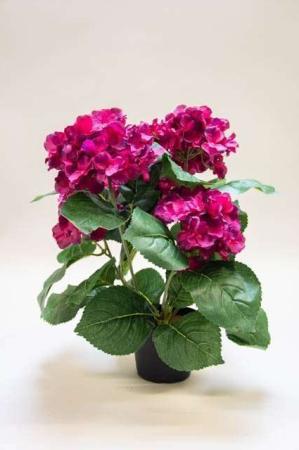 Kunstig vinrød hortensia i potte. Kunstig potteplante. Pollenfri blomster. Pollenfri planter. Kunstig grøn plante med mørkerøde blomster i potte. Potteplante af kunstigt materiale. Bordeauxrød plastic blomst. Kunstig hydrangea.