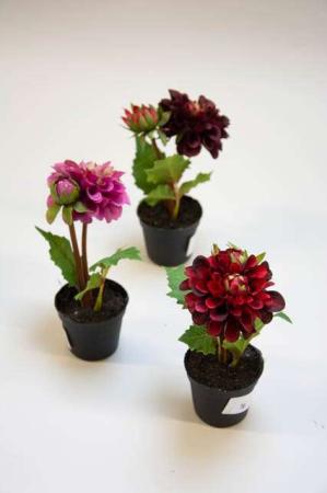 Kunstig zinnia i potte. Kunstigt blad. Kunstig blomst. Plastic blomst. Kunstig plante.