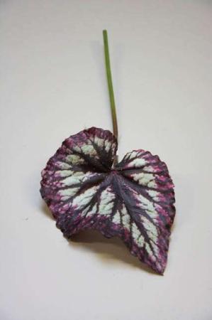 Kunstigt begoniablad. Kunstig dekomateriale. Kunstigt blad. Kunstig blomst. Plastic blomst. Kunstig plante.
