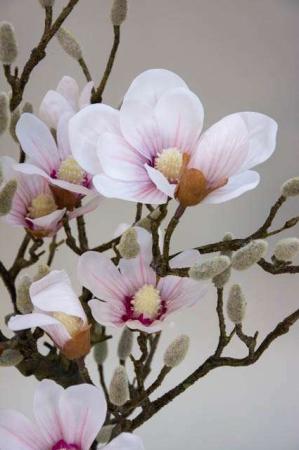 Magnolia træ - rosa. Kunstig plante med blomster - lyserød