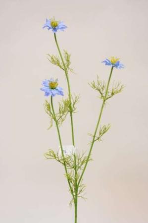 Kunstige blomster - nigella. Afskåren kunstig blomst blå nigella.