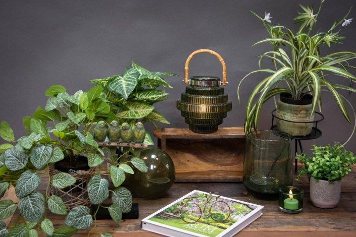 Grønt faret glas til boligindretningen