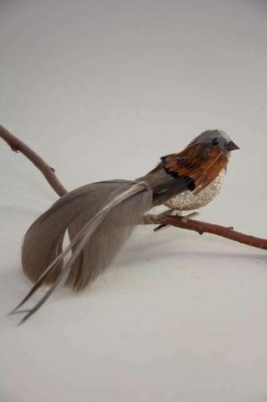 Cognac deko fugl på clips. Brun dekorationsfugl med glimmer.