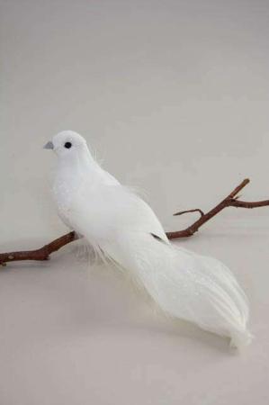 Hvid fredsdue. Hvid deko fugl på clips.