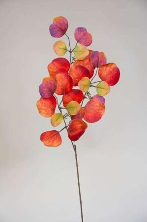 Kunstig eucalyptus - efterårsfarver