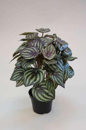 Kunstig grøn plante i potte - peperomia