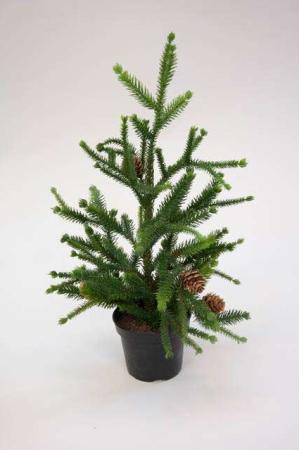 Lille kunstigt juletræ i potte