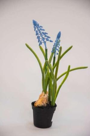 Kunstig blå perlehyacint i potte
