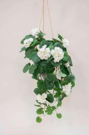 Kunstig hvid pelargonie