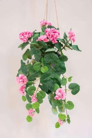 Kunstig lyserød pelargonie